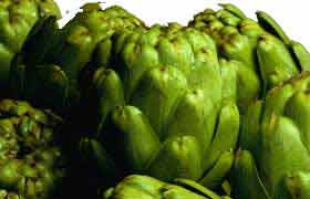 L'artichaut, pour la gastronomie et pour la santé