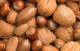Les noix : sous leur coquille se cache une grande richesse nutritive